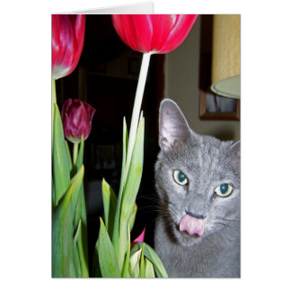 Primavera agradable tarjeta de felicitación