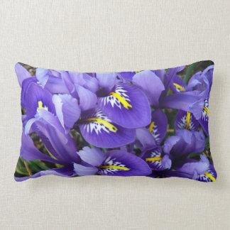 Primavera azul miniatura de los iris floral cojin
