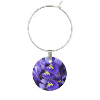 Primavera azul miniatura de los iris floral identificador de copa
