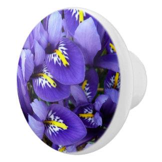 Primavera azul miniatura de los iris floral pomo de cerámica