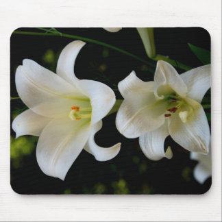 Primavera Daffodiles Alfombrilla De Raton
