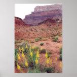 Primavera de Glen Canyon Poster