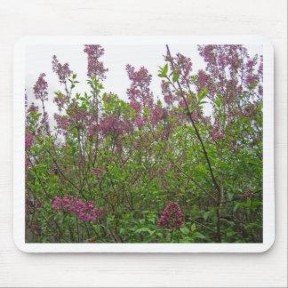Primavera de la lila tapete de ratón