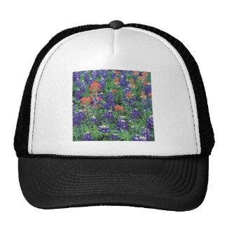 Primavera de la púrpura de la flor de la primavera gorra