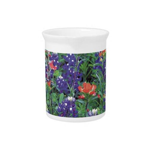 Primavera de la púrpura de la flor de la primavera jarra