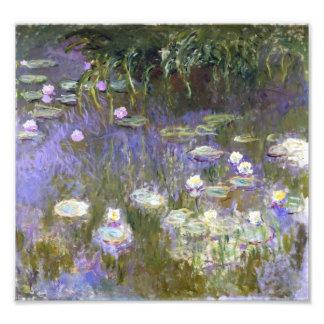 Primavera de Monet Fotografía