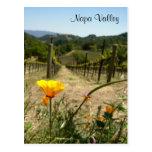 Primavera de Napa Valley Tarjeta Postal