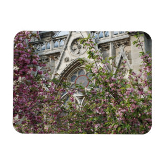 Primavera de Notre Dame Imán De Vinilo