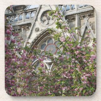 Primavera de Notre Dame Posavaso