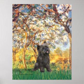Primavera de Terrier de mojón (21 Brindle) - Impresiones