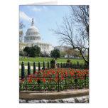 Primavera del edificio del capitolio de los E.E.U. Felicitaciones