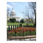 Primavera del edificio del capitolio de los postal