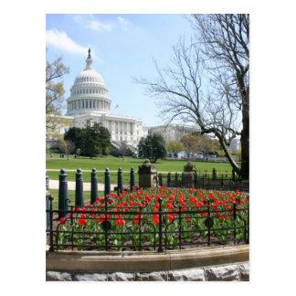 Primavera del edificio del capitolio de los postales