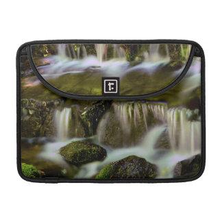 Primavera del helecho, parque nacional de fundas para macbook pro