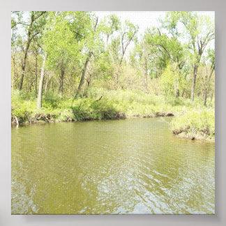 Primavera del penique del lago impresiones