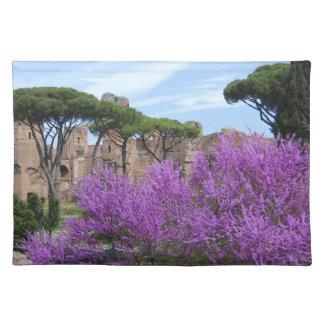 Primavera en americano MoJo Placemat de Roma Mantel Individual