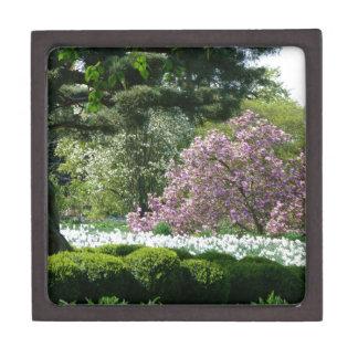 Primavera en el parque caja de joyas de calidad