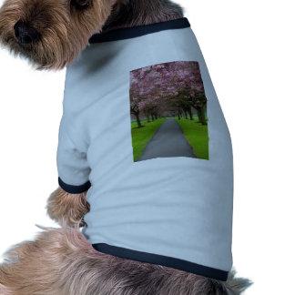 Primavera en el parque camisetas de mascota