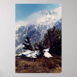 Primavera en el poster de Suiza