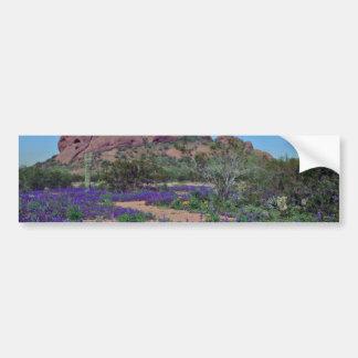 Primavera en flores del parque de Papago Pegatina Para Auto