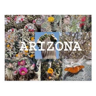 Primavera en la postal de Arizona
