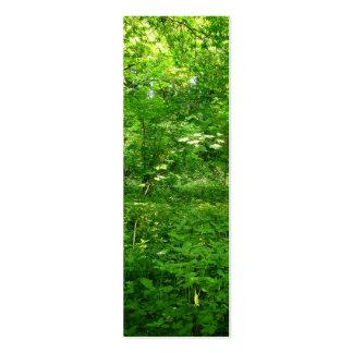 Primavera en la señal de maderas tarjetas de visita mini