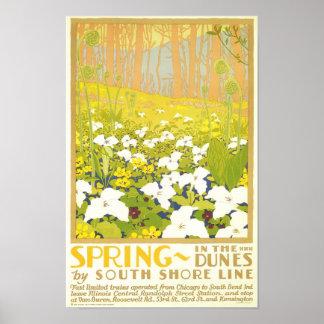 Primavera en las dunas póster