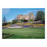Primavera en las flores del castillo de Tamworth Comunicados Personales
