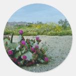 Primavera en las flores del rosa del desierto de etiquetas redondas