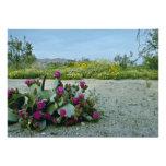 Primavera en las flores del rosa del desierto de S Invitaciones Personalizada