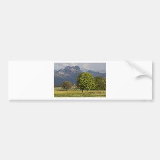 Primavera en las montañas etiqueta de parachoque