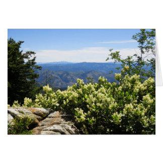 Primavera en las montañas de Idaho Tarjeta De Felicitación
