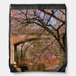 Primavera - encuéntreme debajo del puente mochilas