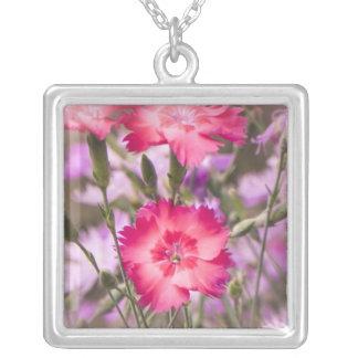 Primavera floral collar