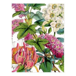 Primavera floral tarjeta postal