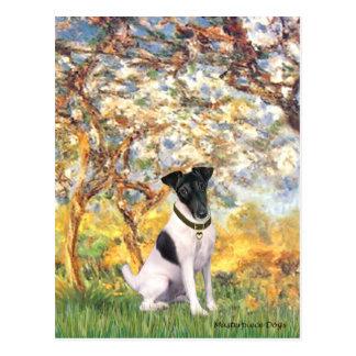 Primavera - fox terrier liso postal