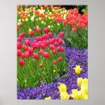primavera impresiones