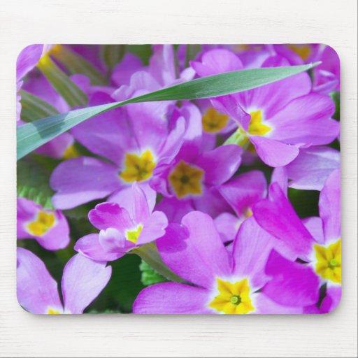 primavera Mousepad