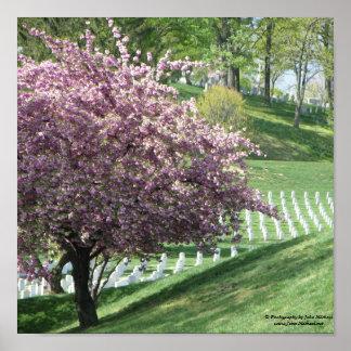Primavera otra vez en el cementerio nacional de Ar Posters