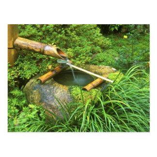 Primavera para la ceremonia de té, Sanzen-en el Postal