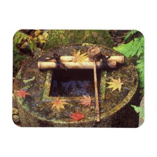 Primavera para la ceremonia de té, templo de Ryanj Iman De Vinilo