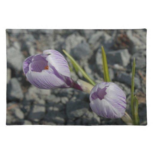 Primavera púrpura manteles individuales