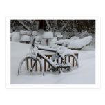 Primavera que espera de ciclo que monta en bicicle tarjetas postales