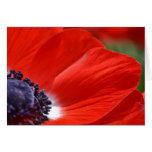 Primavera roja de la amapola floral felicitaciones