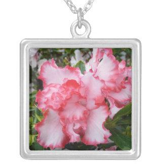 Primavera roja y blanca doble de las azaleas colgante cuadrado