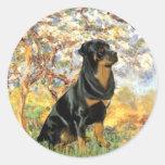 Primavera - Rottweiler (#5) Etiquetas Redondas