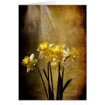 Primavera Sun - tarjeta de felicitación