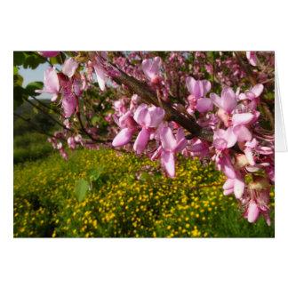 primavera felicitación