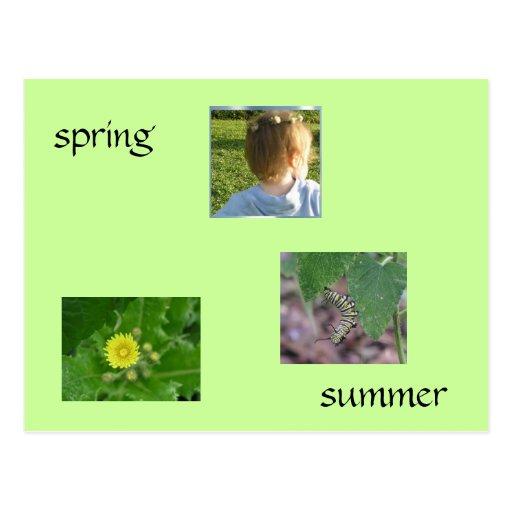 Primavera/verano Postal