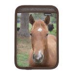 Primer alerta del caballo de Brown Fundas iPad Mini